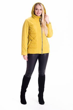 Женская стильная куртка песочного цвета 46-66рр., фото 2
