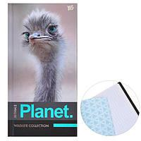 "Блокнот 100*200/64 7БЦ, фольга сер., пантон, УФ выборка, мат.ламин. ""Animals planet"" YES"