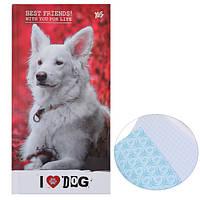 """Блокнот 100*200/64 7БЦ, фольга серебро, УФ выборка, мат.ламинация """"Cool pets"""" YES"""