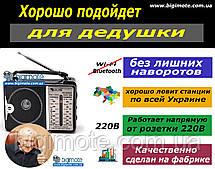 РАДИО ДЛЯ ДЕДУШКИ,радиоприемник,радио,ФМ радио,радио ФМ,радіоприймач,ФМ радіоприймач, Bigimote, Golon rx 606, фото 2