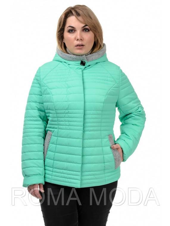 Куртка женская демисезонная в 4х цветах №241 размер 48-54