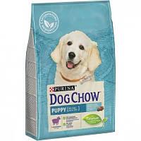 Сухой корм для щенков Purina Dog Chow Puppy Lamb 2,5 кг