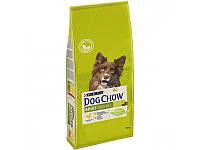 Сухой корм для собак Purina Dog Chow Adult Lamb 2,5 кг