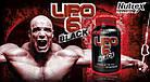 Жиросжигатель Lipo-6 Black (120 капс.) NUTREX, фото 2