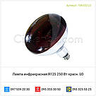 Лампа инфракрасная R125 250 Вт красн. LO, фото 2