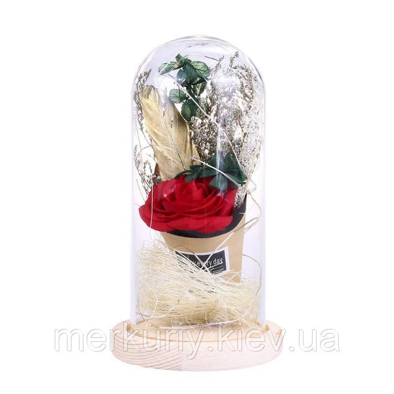 Троянда у склі. Квітка в колбі великий