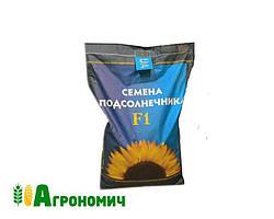 Гібрид соняшнику АНТЕЙ