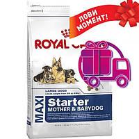 Корм Royal Canin Maxi Starter Роял Канін Максі Стартер для цуценят великих пород15кг