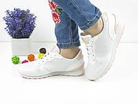 ЖЕНСКИЕ СТИЛЬНЫЕ БЕЛЫЕ КРОССОВКИ 1027 (кросовки спортивне взуття жіночі  стильні) 745cfc41e1380