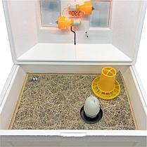 Брудер (Ясли) Теплуша для цыплят, бройлеров, перепелов  до 100 голов, фото 2