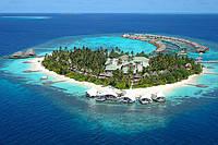Биоразнообразие подводного царства в Индийском океане возле Мальдивских островов чарует, притягивает и заставляет туристов вернуться снова и снова…