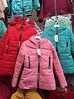 5e4eda98b46 Детские куртки оптом весна-осень Притал 134-152р  продажа