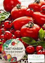 Биг-набор овощей 'Томатный марафон' 'Богатый фермер' (в коробке) ТМ 'Весна' 60 уп