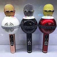 Колонка с функцией Караоке Микрофона Wster WS-878 (USB, microSD, AUX, FM, Bluetooth), фото 1