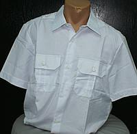 Рубашка ж.д. короткий рукав (белая)