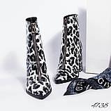 Женские демисезонные ботильоны на устойчивом каблуке, фото 2
