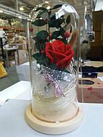 Вечная роза в колбе. Цветок под стеклом