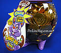 ШоколадныемонетыJOHNY BEE® Dino 29 мм, фото 2