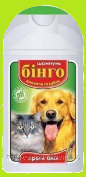 Шампунь Бинго для собак и котов против блох 200мл