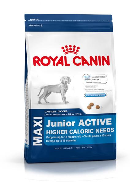 Royal Canine (Роял Канин) Maxi Junior Active для активных щенков крупных пород