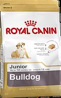 Royal Canin (Роял Канин) Bulldog Junior для щенков английских бульдогов до 12 месяцев