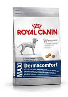 Royal Canin (Роял Канин) MAXI DERMACOMFORT для собак крупных пород с чувствительной кожей
