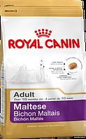 Royal Canin (Роял Канин) Maltese для собак породы Мальтийская Болонка