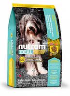 I20 Nutram Ideal Solution Support Sensetive Dog Natural Food Для взрослых чувствительных собак с ягненком и коричневым рисом