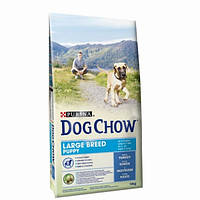 Dog Chow Puppy Large Breed корм для щенков крупных пород с индейкой