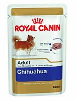 Royal Canin (Роял Канин) Chihuahua чихуахуа пауч