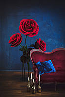 Большие цветы Розы Куст на стойке