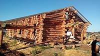 Строительство деревянного дома из дикого сруба