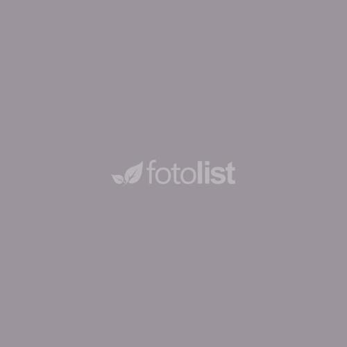 Фон студийный тканевый серый Visico PBM-1827 grey 1,8х2,7м