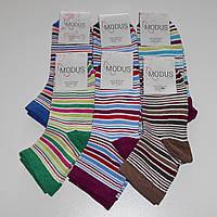 Женские носки Modus - 6.00 грн./пара (полоска), фото 1