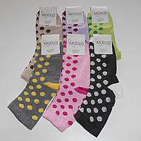 Женские носки Modus - 6.25 грн./пара (кружочки), фото 1