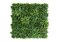 Декоративное вертикальное озеленение Фитостена 100x100 см GCK-12