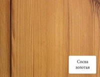 """МДФ-панель (Вагонка) 2600х148мм """"Сосна золотая"""" """"Стандарт"""" Омис"""