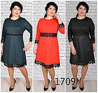 Милое женское платье 52,54,56,58р., фото 1