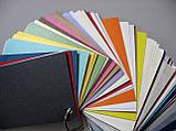 Тиснення на картоні, папері. Кульбабки, 106х150 мм, фото 3