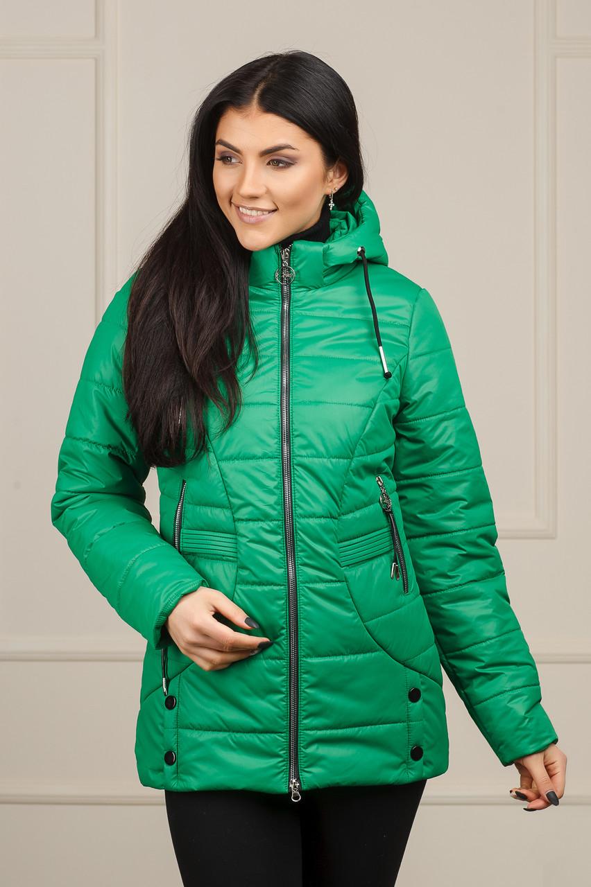 Куртка удлиненная Вида цвет зелёная