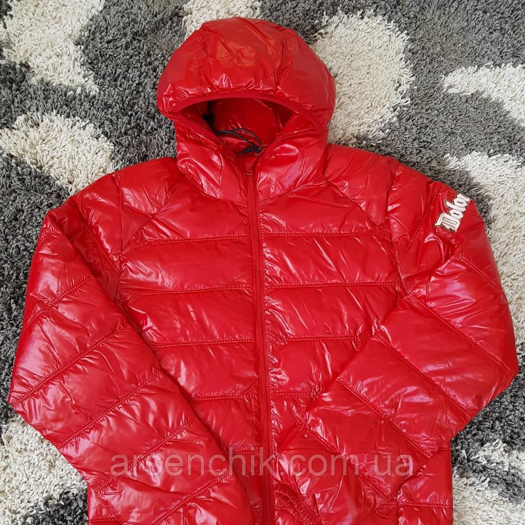 Куртка DOLOMITI мужская демисезонная  L