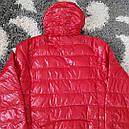 Куртка DOLOMITI мужская демисезонная  L, фото 5