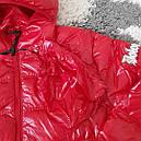 Куртка DOLOMITI мужская демисезонная  L, фото 4