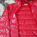 Куртка DOLOMITI мужская демисезонная  L, фото 3