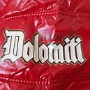 Куртка DOLOMITI мужская демисезонная  L, фото 2