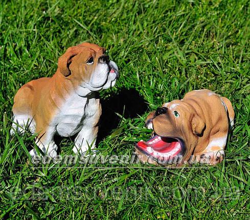 Садовая фигура Бульдог сидячий и Бульдог зевающий, фото 2