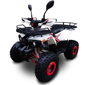 Квадроциклы Hornet