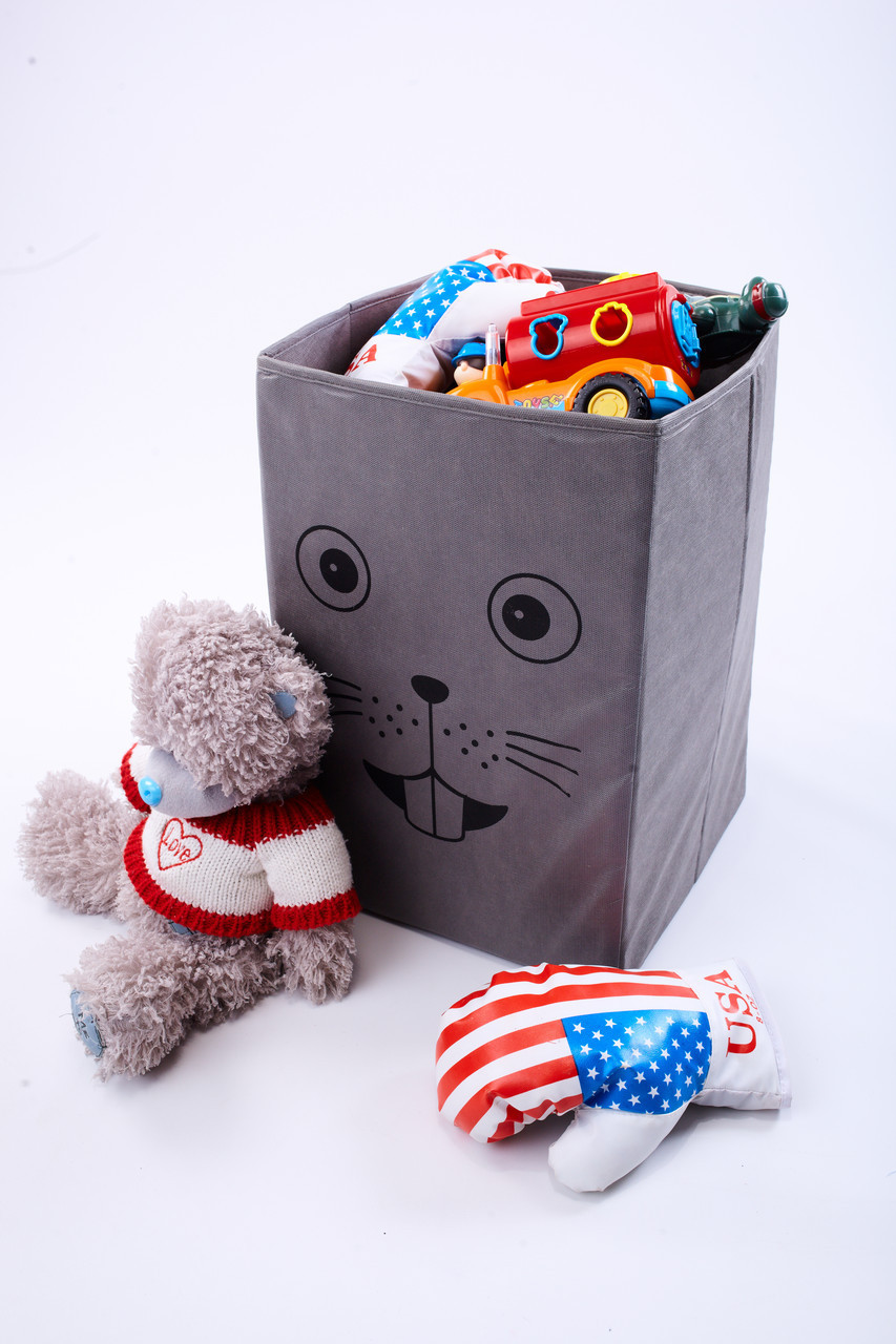 Детский ящик для игрушек без крышки Мышка 30*30 см