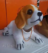 Собака собачки в автомобиль с кивающей головой БИГЛЬ! На торпеду! КАЧЕСТВО!