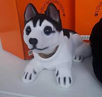 Собака собачки в автомобиль с кивающей головой ХАСКИ! На торпеду! КАЧЕСТВО!, фото 1